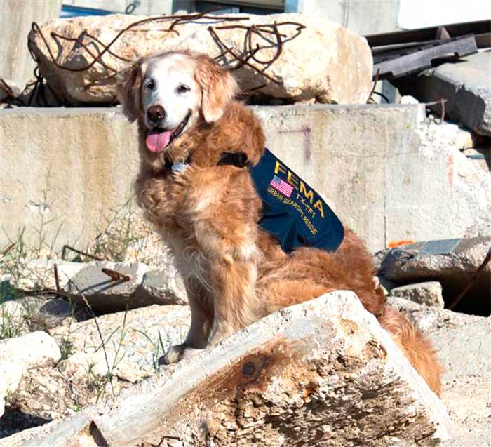 3 Consecutive Days This 9/11 Hero Did Not Do Her Favorite Thing – Eat