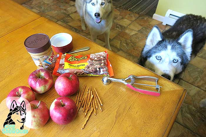 Treat Peanut Butter Apples for Dogs 2