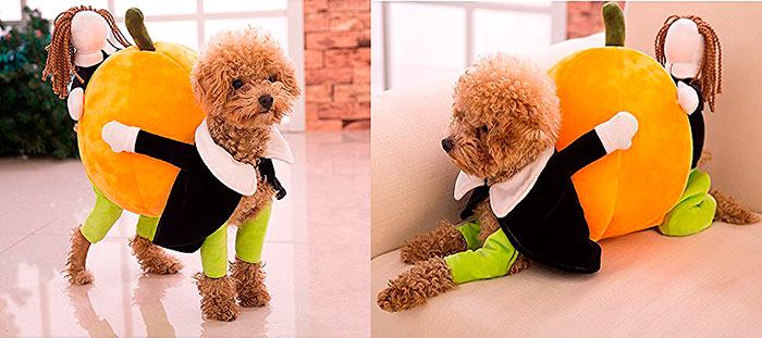 17 Funniest Dog Costumes