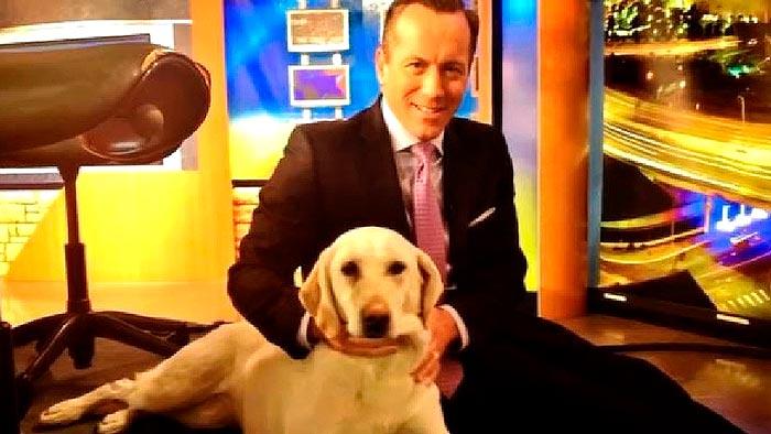 News anchor dog dies