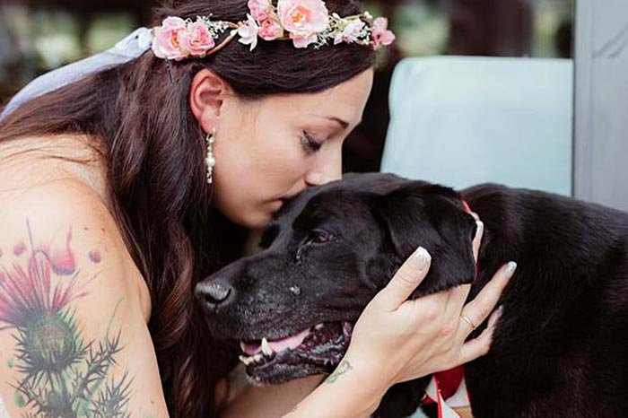 Dog With A Brain Tumor Refuses To Leave This Earth Till His Dog Mom's Married (Video)