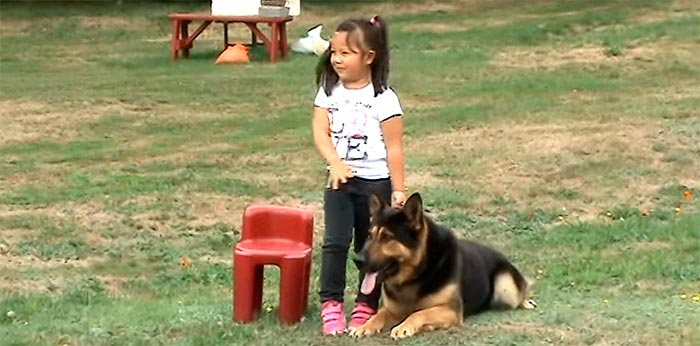 A Dog Was This Babysitter's Worst Nightmare – Dogs Protecting Children (Slideshow)